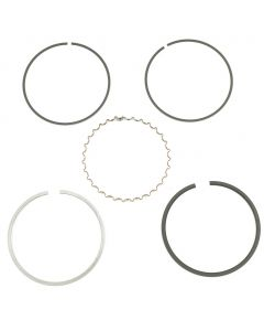 Piston Rings - 69.5mm - KZ1000 - 1981 & Up