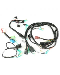 Wiring Harness - Set - Z1