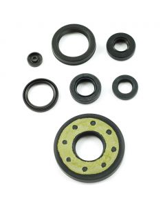 Engine Oil Seal Kit CB750
