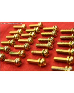 Machine Screw Phillips Pan-Head 4x16 gold 25-pack