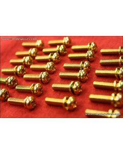 Machine Screw Phillips Pan-Head 4x14 gold 25-pack